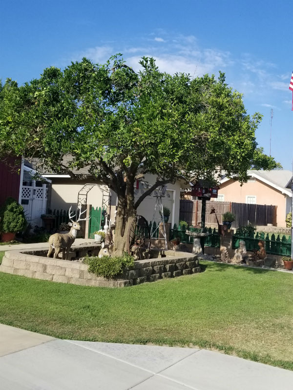 13- Landscaping Services